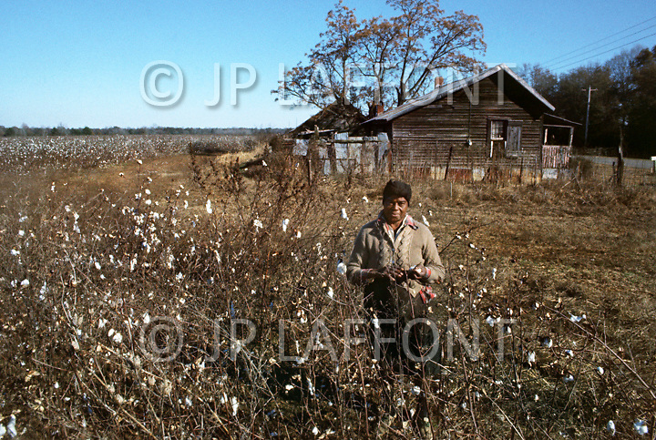 Plains, GA. December 1976.<br /> A woman collects cotton in her small field in the outskirts of Plains.<br /> Southerner Jimmy Carter is going to the White House. Born in Georgia, Carter is a democrat with a more open mind. A man who favors racial integration inspite of a majority of white people still living under misserable conditions. Officially, social barriers have been dropped, but racism still exists. If the South is on the rise and if in Georgia average salaries have trippled in the last 15 years, not everyone is benefitting from this economic boom. Perhaps, Jimmy Carter will seriously consider those who are in the lower end of the system's social scales.
