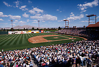 LAS VEGAS, NV - Wide angle overall scene of the game between the Oakland Athletics and Detroit Tigers at Cashman Field in Las Vegas, Nevada in 1996. (Photo by Brad Mangin)