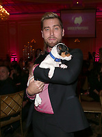 LOS ANGELES, CA - NOVEMBER 9: Lance Bass, at the 2nd Annual Vanderpump Dog Foundation Gala at the Taglyan Cultural Complex in Los Angeles, California on November 9, 2017. Credit: November 9, 2017. Credit: Faye Sadou/MediaPunch
