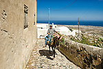 Local travelling by donkey in Pyrgos, Santorini, Greece