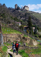Algunder Waalweg und Schloss Tirol bei Meran-Merano, Provinz Bozen &ndash; S&uuml;dtirol, Italien<br /> Castle Tirol and Hiking Trail Algunder Waalweg, Meran-Merano, province Bozen-South Tyrol, Italy