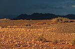 Désert du Namib. Parc national du du Namib Naukluft,  Couleurs d'orage. Namibie. Afrique.Namibia; Africa