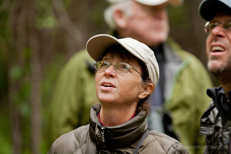 Louise Zemaitis was one of our VENT guides. She is an artist and naturalist living in Cape May, New Jersey where she is a popular field trip leader teaching birding workshops as an Associate Naturalist with New Jersey Audubon's Cape May Bird Observatory. She also enjoys leading birding groups and lecturing at birding festivals and is known for her enthusiasm for all natural history subjects. Louise and her husband, Michael O'Brien, have been guiding young birders at birding events and conferences for many years. In addition to leading, Louise is coordinator of the Monarch Monitoring Project in Cape May, compiler of the Cape May Christmas Bird Count, and member of the Cape May Artists' Cooperative. An honors graduate of Temple University's Tyler School of Art, she enjoys working as a freelance artist and her illustrations have been widely published. Her proudest accomplishment has been the raising of her two sons, Bradley, a biologist and artist, and Alec, a philosopher and musician.