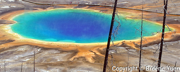 Yellowstone National Park, Grand Prismatic Spring, 2003
