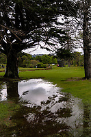 A general view through to the 12th green on day one of the 2017 Asia-Pacific Amateur Championship day one at Royal Wellington Golf Club in Wellington, New Zealand on Thursday, 26 October 2017. Photo: Dave Lintott / lintottphoto.co.nz