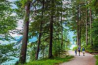 Oesterreich, Tirol, Pertisau am Achensee: unterwegs auf dem Seerundweg (Mariensteig) | Austria, Tyrol, Pertisau am Achensee: hiking along the lake