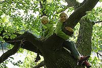Kinder klettern in einem Baum, Junge und Mädchen, Geschwister