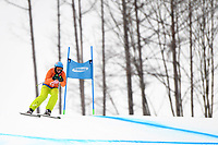 DH training / Christian Geiger (guide for Melissa Perrine)<br /> PyeongChang 2018 Paralympic Games<br /> Australian Paralympic Committee<br /> PyeongChang South Korea<br /> Wednesday March 7th 2018<br /> &copy; Sport the library / Jeff Crow