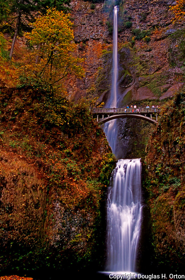 Multnomah Falls is the highest waterfall in Oregon, located in the Columbia River Gorge east of Portland it has been a popular tourist destination for generations.