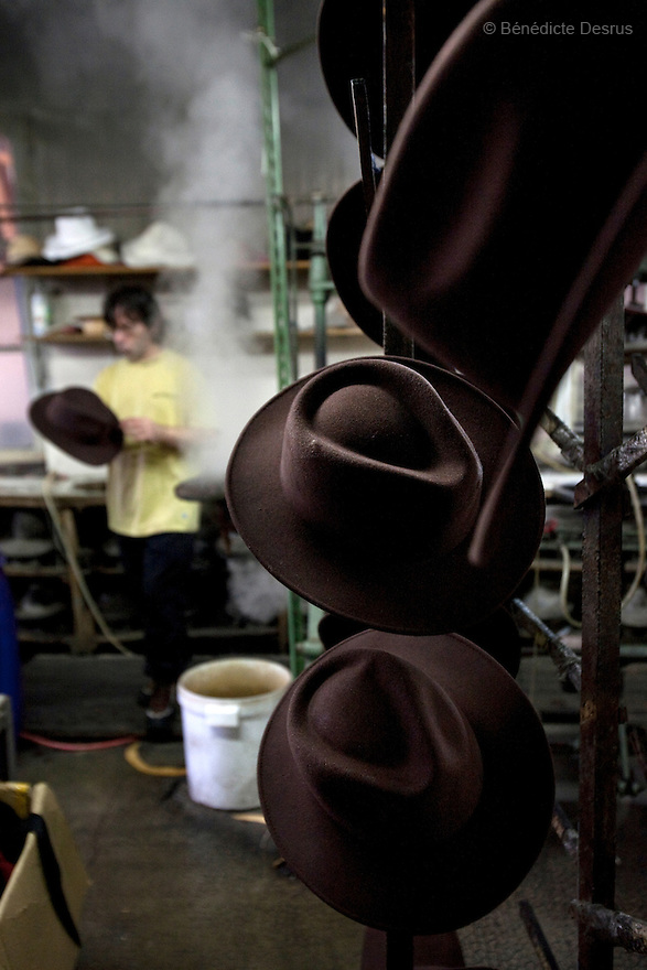 9 december 2009 - Coustilleres' hat factory, Septfonds, France - Robert Cavaille, worker at the Coustilleres' hat factory, steams felt-hats. Creasing the hat is done by hand with lots of steam. When the felt is steamed it becomes soft and the creasing is done while the hat is soft. the steaming is when a hat takes its final shape. Septfonds is the heart of French straw hat making, due to its very ancient hatter tradition. The hat making industry had its commercial peak in the late 19th century..Coustillères is a family owned hat making factory that has been making straw hats in Septfonds for nearly 100 years. They make hats from straw, felt, and cloth as well as caps. The current owner is Jean-Claude Coustilleres. He is one of the last hat makers of the region..The straw hat making process is very labor intensive and numerous hands are involved. Nearly all of the equipment is over 100 years old, they use the original presses and tools including aluminium molds and sewing machines and dye their own straw continuing the traditional methods of manufacturing. The hat blocking and shaping, straw braids construction and dyeing are all done by hand..The company works on behalf of fashion houses and makes a variety of regional and historical hats. It produces 2 collections a year distributed by a network of salespeople and through a catalog to clients around the world. Photo credit: Benedicte Desrus