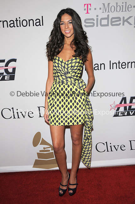Terri Seymour at The Clive Davis / Recording Academy Annual Pre- Grammy Party held at The Beverly Hilton Hotel in Beverly Hills, California on February 07,2009                                                                     Copyright 2009 Debbie VanStory/RockinExposures