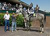 Silent Money winning at Delaware Park on 5/19/12