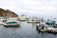 LOS ANGELES - SEP 28:  Catalina Harbor with Casino at the 2019 Catalina Film Festival - Saturday at the Catalina Bay on September 28, 2019 in Avalon, CA