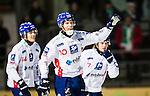 Stockholm 2014-11-14 Bandy Elitserien Hammarby IF - Edsbyns IF :  <br /> Edsbyns Daniel Liw firar sitt 0-1 m&aring;l under matchen mellan Hammarby IF och Edsbyns IF <br /> (Foto: Kenta J&ouml;nsson) Nyckelord:  Elitserien Bandy Zinkensdamms IP Zinkensdamm Zinken Hammarby Bajen HIF HeIF Edsbyn EIF Byn jubel gl&auml;dje lycka glad happy