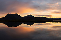 Mountain reflection in small marsh pond on Gimsøy, Lofoten Islands, Norway