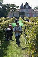 Europe/France/Aquitaine/33/Gironde/Saint-Yzans-de-Médoc: Château  Loudenne, Médoc Cru Bourgeois  les vendanges manuelles - Vendangeur