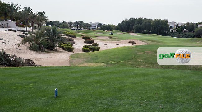 5th tee at The Address Montgomerie Golf Club, Dubai, United Arab Emirates.  27/01/2016. Picture: Golffile | David Lloyd<br /> <br /> All photos usage must carry mandatory copyright credit (&copy; Golffile | David Lloyd)