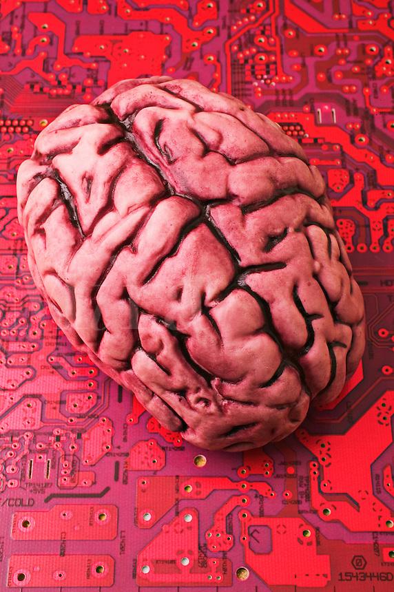 Brain on circuit board