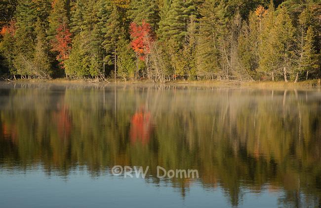 Glory Lake, Hartwick Pines State Park, Michigan