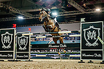 Roger-Yves Bost of France riding Nippon d'Elle in action at the the Massimo Dutti Trophy during the Longines Hong Kong Masters 2015 at the AsiaWorld Expo on 15 February 2015 in Hong Kong, China. Photo by Juan Flor / Power Sport Images