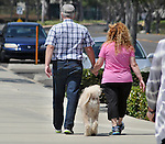 A couple walking with their SheepDog on the walkway overlook of the Flowerfields, in Carlsbad, CA, on Wednesday, April 27, 2016. Photo by Jim Peppler. Copyright Jim Peppler  2016.