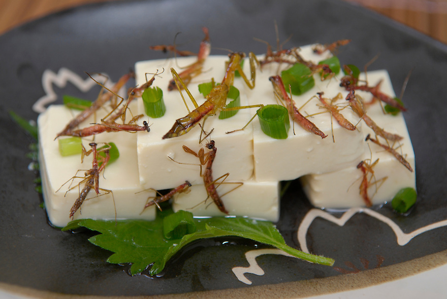 "Tofu, chopped spring onion and preying mantis. Tokyo resident Shoichi Uchiyama is the author of ""Fun Insect Cooking"". His blog on the topic gets 400 hits a day. He believes insects could one day be the solution to food shortages, and that rearing bugs at home could dispel food safety worries."