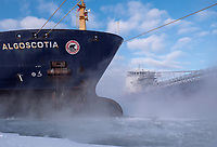 The Algoma Niagara sails by the Algomascotia while heading for a winter maintenance schedule at the Government Docks. The Algoscotia is docked at the Sydney Smith dock. The Algoma Niagara was pushed into place by the tug Pride.