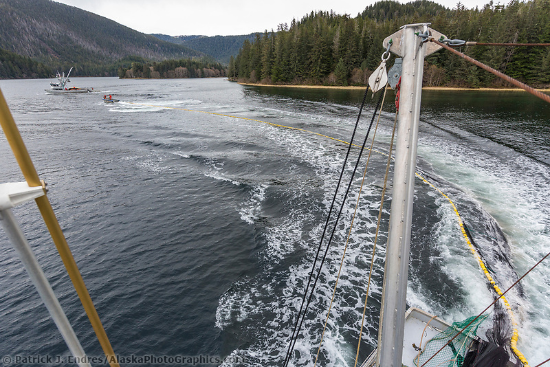 Seiner deploys net during the Sitka sac roe Herring fishery near Sitka in southeast, Alaska.
