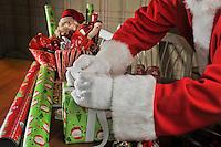 Santa Holiday Christmas