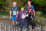 Donie Sullivan (Ballyhar), Ger Daly (Ballyfinane/Firies) and Jim Tobin (West Cork) at the Run Rudolph Run at An Riocht in Castleisland on Sunday.