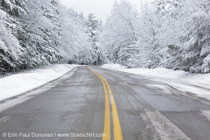 Forest covered in snow along the Kancamagus Highway (route 112) in the White Mountains, New Hampshire USA.