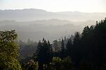 Upper Dry Creek Valley near Lake Sonoma