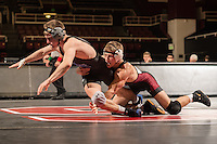 STANFORD, CA - January 18, 2015: Connor Schram of the Stanford Cardinal wrestling team competes during a meet against Air Force Falcons at Maples Pavilion. Stanford won 27-8.