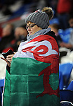 A Wales fan during the FIFA World Cup Qualifying match at the Cardiff City Stadium, Cardiff. Picture date: November 12th, 2016. Pic Robin Parker/Sportimage