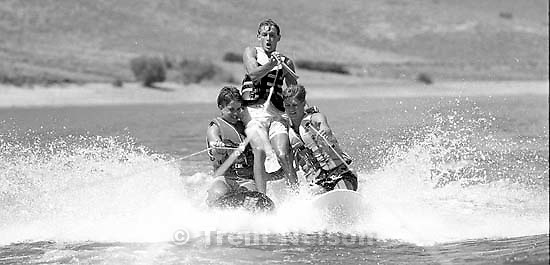 &quot;Ski-Dogs&quot; waterskiing.<br />