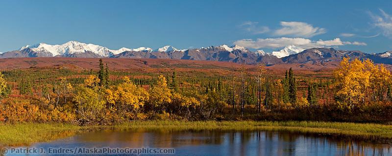 Vibrant fall colors on the tundra in the Alaska Range mountains, Interior, Alaska.