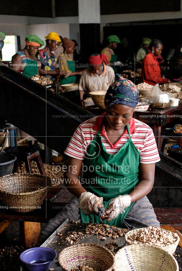 BURKINA FASO, Banfora , Sotria B Sarl factory for cashew kernel processing, women peel cashew nuts, the shell has an agressive acid, women wear plastic gloves for protection / Fabrik zur Verarbeitung von Kaschukerne , Frauen schaelen und sortieren Kaschu Nuesse