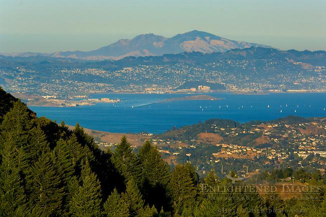 View of Mount Diablo and San Francisco Bay from Bolinas Ridge, Mount Tamalpais State Park, Marin County, California