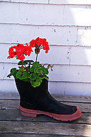 Rubber boot with flower, rain gear
