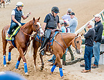 LOUISVILLE, KENTUCKY - MAY 01: Trainer Bob Baffert checks in on Improbable after he exercised in preparation for the Kentucky Derby at Churchill Downs in Louisville, Kentucky on May 1, 2019. Scott Serio/Eclipse Sportswire/CSM