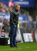 FUSSBALL   1. BUNDESLIGA   SAISON 2012/2013    34. SPIELTAG Hamburger SV - Bayer 04 Leverkusen                      18.05.2013 Trainer Thorsten Fink (Hamburger SV)