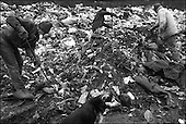 Katarzynowo, Northern Poland, December 2005<br /> The faces of Polish poverty<br /> The ex-collective farm village, forgotten by the state. People to make their living collect rubbish from the waste dump<br /> (&copy; Filip Cwik / Napo Images for Newsweek Polska)<br /> <br /> Katarzynowo k. Elku 07<br /> grudzien 2005 Polska<br /> Oblicza biedy w Polsce<br /> Katarzynowo wies w warminsko - mazurskim 20 km od Elku. Typowa po PGR-owska wies zapomniana przez panstwo. Wiekszosc mieszkancow jest bez pracy. Okoliczne wysypisko smieci jest jedynym zrodlem dochodu wiekszosci rodzin. Zbieraja puszki, gume i wszystko co ma jakakolwiek wartosc <br /> <br /> Wiekszosc Polakow niemal / 85% / z trudem radzi sobie z przezyciem od pierwszego do pierwszego. Ponad polowa / 52,5% / zalega ponad trzy miesiace z czynszem. Tyle samo osob, aby poprawic swoja sytuacje materialna radykalnie ogranicza wydatki. W beznadziejnej sytuacji jest ludnosc wiejska gdzie 18,5% zyje w skrajnej nedzy. W 1991 roku rzad polski zlikwidowal Panstwowe Gospodarstwa Rolne ktore od II Wojny Swiatowej byly miejscem pracy dla ponad 2 mln rolnikow glownie na ziemiach odzyskanych. Ci ludzie i ich rodziny nie odnalezli sie w nowej rzeczywistosci<br /> (&copy; Filip Cwik / Napo Images dla Newsweek Polska)