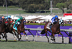 November 2, 2019: Mo Forza, ridden by Joel Rosario, wins the Qatar Twilight Derby (Grade II) on Breeders' Cup World Championship Saturday at Santa Anita Park on November 2, 2019: in                                                                                                                                                                                                                                                                                                                                                                                                                                                                                                                                                                                                                                                                                                                                          Arcadia, California. Bill Denver/Eclipse Sportswire/CSM