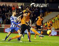 Wolves v Brighton 20.12.14