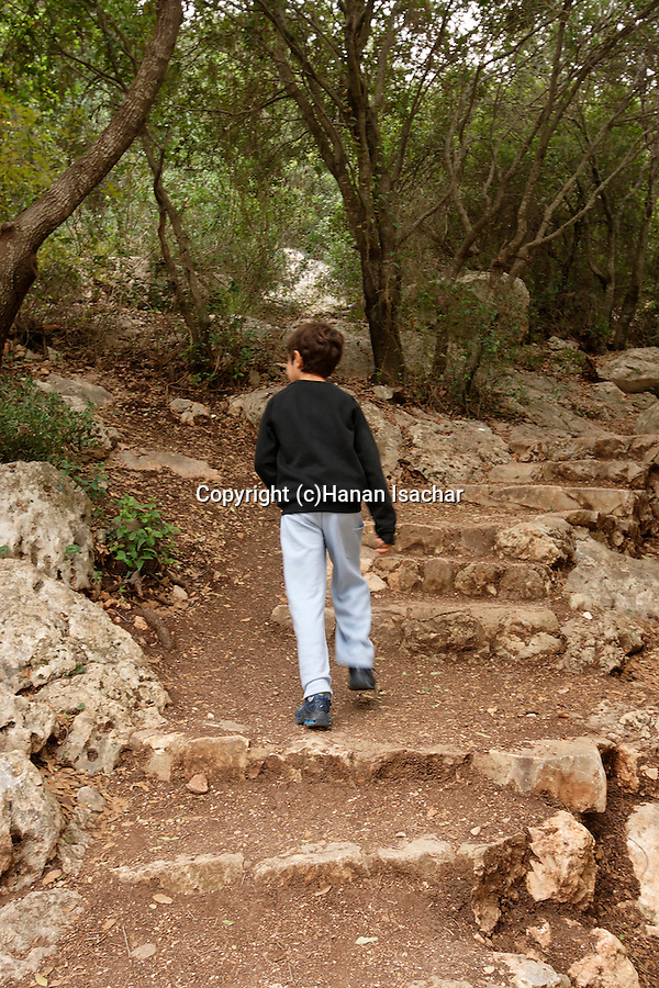 Israel, Carmel. The ascent to Etzba cave in Wadi Oren