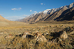 Rocks in mountain valley, Sarychat-Ertash Strict Nature Reserve, Tien Shan Mountains, eastern Kyrgyzstan