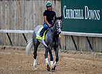 LOUISVILLE, KENTUCKY - APRIL 30: Tacitus, trained by William Mott, exercises in preparation for the Kentucky Derby at Churchill Downs in Louisville, Kentucky on April 30, 2019. John Voorhees/Eclipse Sportswire/CSM