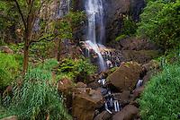 Haputale, Bambarakanda Falls, Sri Lanka Hill Country, Nuwara Eliya District, Asia. This is a photo of Bambarakanda Falls, a waterfall near Haputale, Sri Lanka Hill Country, Nuwara Eliya District, Asia.