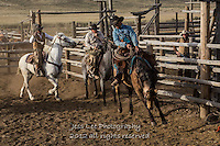 Loosing them up Cowboys working and playing. Cowboy Cowboy Photo Cowboy, Cowboy and Cowgirl photographs of western ranches working with horses and cattle by western cowboy photographer Jess Lee. Photographing ranches big and small in Wyoming,Montana,Idaho,Oregon,Colorado,Nevada,Arizona,Utah,New Mexico.