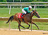 Aplaingirl winning at Delaware Park on 7/2/16